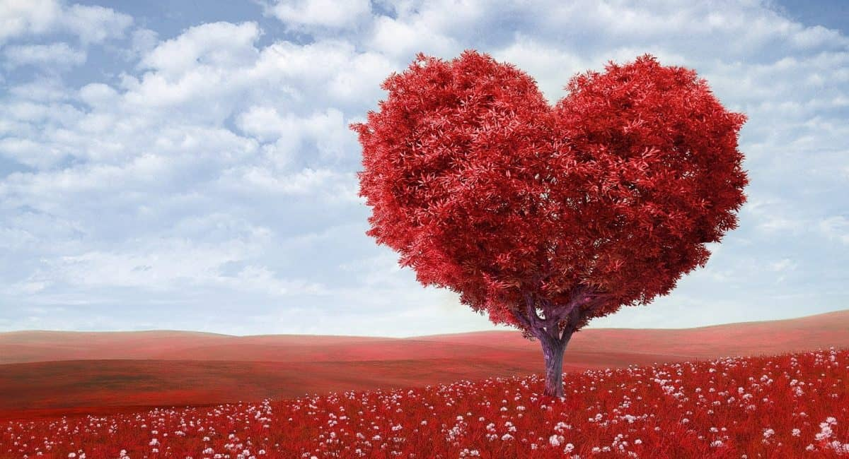 Rheumatic and Valvular Heart Disease